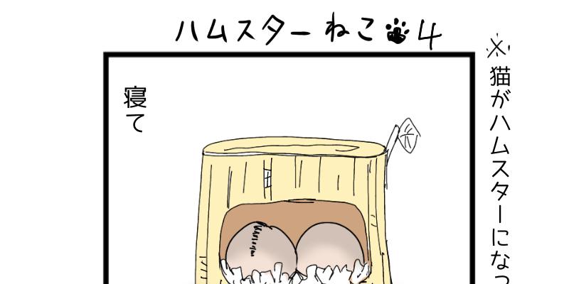 猫4コマ漫画「ハムスターねこ」どっちもどっち
