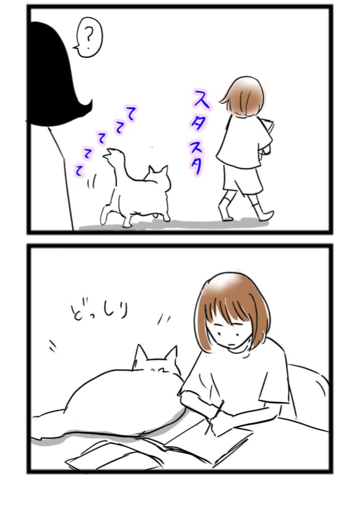 4コマ猫漫画 娘のことは好きではないけど