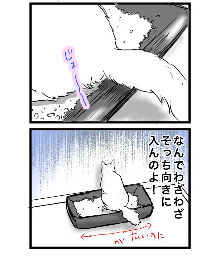 4コマ猫漫画 狭い家の猫トイレ