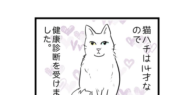 猫4コマ漫画 猫、初めてペットドック行きました